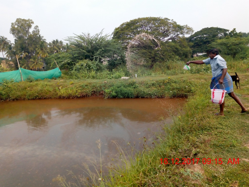 Erode Centre for Sustainable Aquaculture - Home